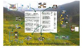 Estrategias Metodologicas MESCP