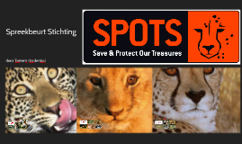 Spreekbeurt Stichting Spots