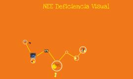 NEE Deficiencia Visual