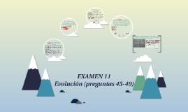 EXAMEN 11