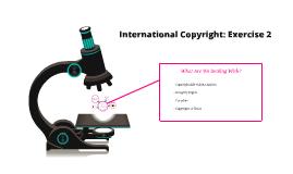 International Copyright: Exercise 2