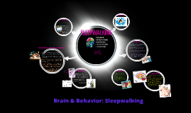 Brain & Behavior: Sleepwalking
