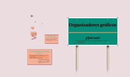 Copy of Organizadores gráficos
