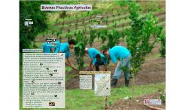 Buenas Practicas Agricolas en la