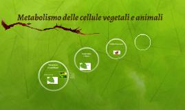 Metabolismo delle cellule vegetali