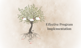 Effective Program Implementation