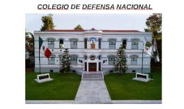 COLEGIO DE DEFENSA NACIONAL