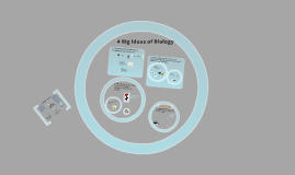 Copy of Copy of The 4 Big Ideas of AP Bio