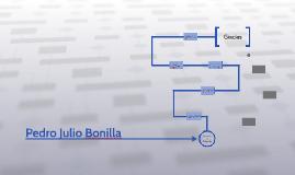 Presentacion PJBonilla