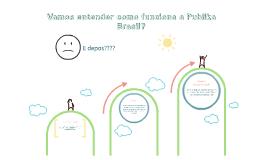 Vamos entender como funciona a Publika Brasil?