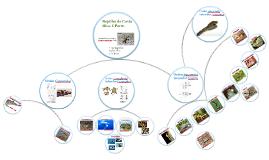 Familias de Reptiles de Costa Rica parte 1