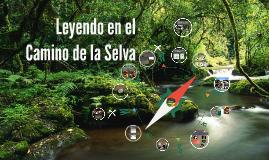 Leyendo en el Camino de la Selva