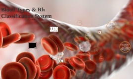 Copy of Blood Types