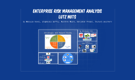 Enterprise Risk Management Analysis