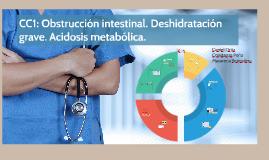 CC1: Obstrccuión intestinal. Deshiodratación grave. Acidosis