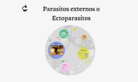 Parasitos externos o ectoparasitos