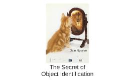 The Secret of Object Identification