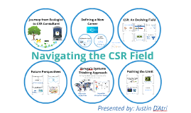 Navigating the CSR Field