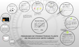 Copy of GESTION DE LA PRODUCTIVIDAD