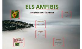 Copy of ELS AMFIBIS