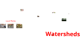 Watershed Project
