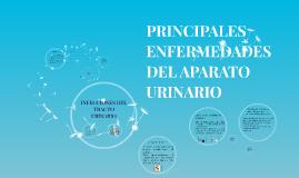 Copy of PRINCIPALES ENFERMEDADES DEL APARATO URINARIO