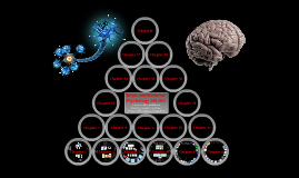 UNM Psychology 240.002