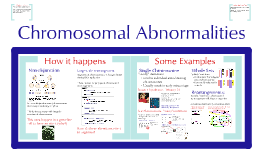 Copy of AP Bio-  Cell Cycle 4: Chromosomal Abnormalities
