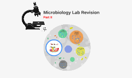 Microbiology Lab Revision