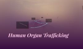 Human Organ Trafficking