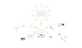 Copy of Medios Físicos de transmisión de Información