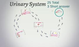 Mod 2-Urinary System