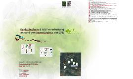 Feldaufnahme & GIS-Verarbeitung anhand Inventurplots der LFE