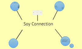 Soy Connection