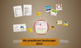 My practicum 2014