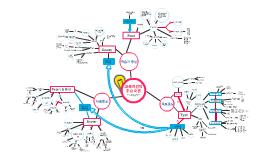 교육과정 Mind Map