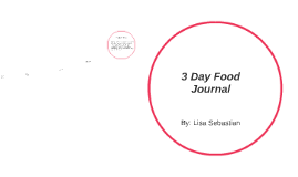 3 Day Food Journal