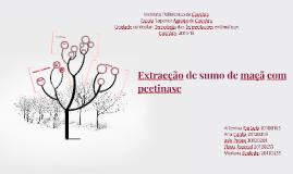Copy of Extracção de sumo de maçã com pectinase
