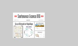 Soutenance Licence DEG