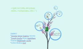 Copy of Copy of EQUIPO 5 (instituciones, ONG´S, empresas, redes,organizaciones)