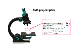 CMS project plan
