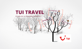 tui travel plc case study Tui travel plc, the united kingdom's largest travel company specializing in package holidays, used foresee to define a clear path for website improvements download now case study: utility company.
