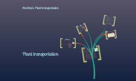 Plant Transportation