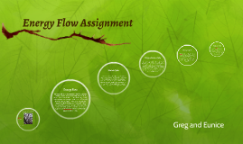 Energy Flow Assignment