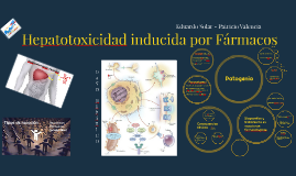 Hepatotoxicidad inducida por farmacos