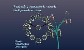 Preparacion y presentacion de reportes de investigacion de mercados