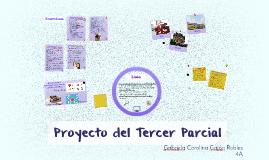 Proyecto del Tercer Parcial