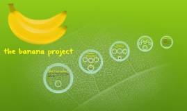 the banana project! hooray!