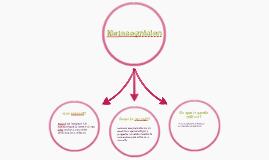 3B12_Metacognicion