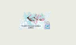 """ECODET"" Detergente ecológico multiuso."